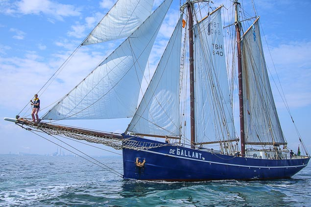 Tall Ship DeGallant 3231