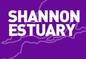 Shannon Estuary News