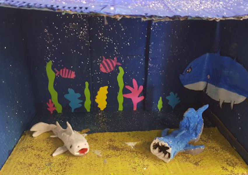Shark diorama by pupils at St Patrick's NS (Photo: Padraic Creedon)