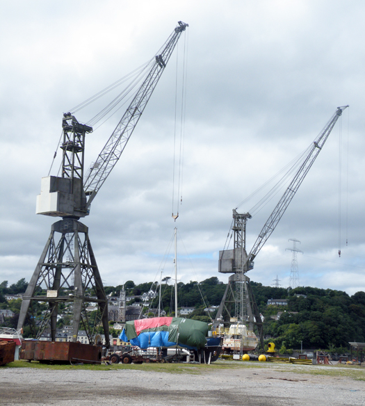 VCD surviving cranes
