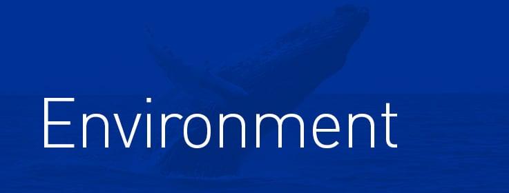 Marine Environment, Science, wildlife, weather & Ocean energy