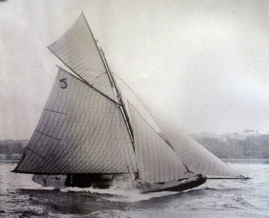 Hilditch-built Tern