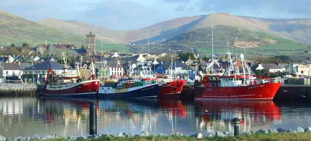 dingle harbour 2