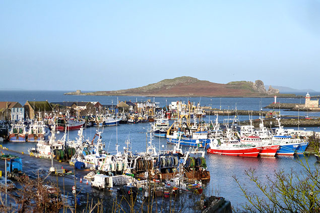 fishing fleet in Howth