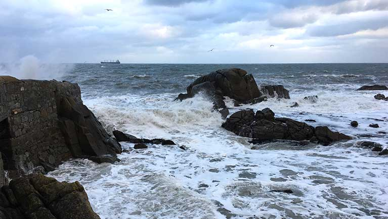 forty foot storm dublin bay