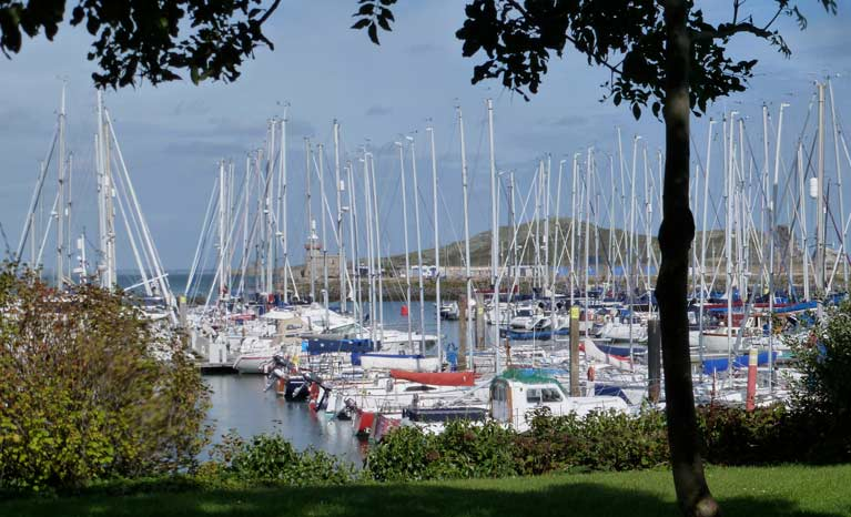 howth marina greenery14