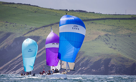 fleet racing at Kinsale