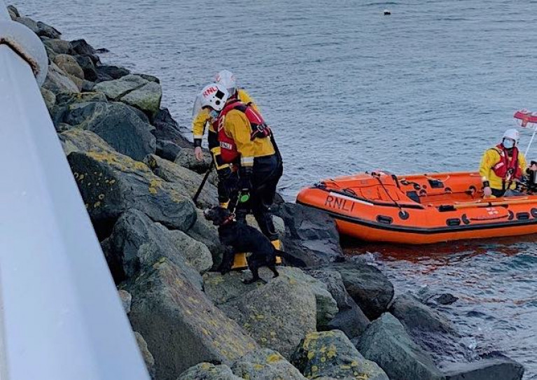 Dun Laoghaire Harbour RNLI Inshore Lifeboats Rescues Dog From Marina Breakwater