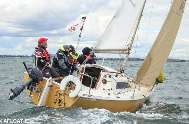 Asterix (Frazer Meredith & John Counihan) of the  DMYC were second in the DBSC Cruiser 3 Tuesday Echo race