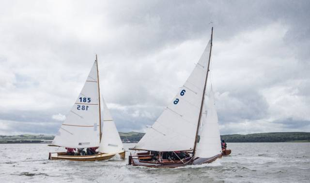Six different sailing clubs are represented at Mermaid Week at Skerries