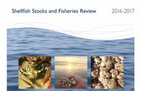 Shellfish Stock Review Warns Over 'Unexpected Changes' In Some Species Numbers