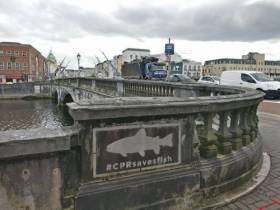 The #CPRsavesfish stencil on a bridge in Cork city