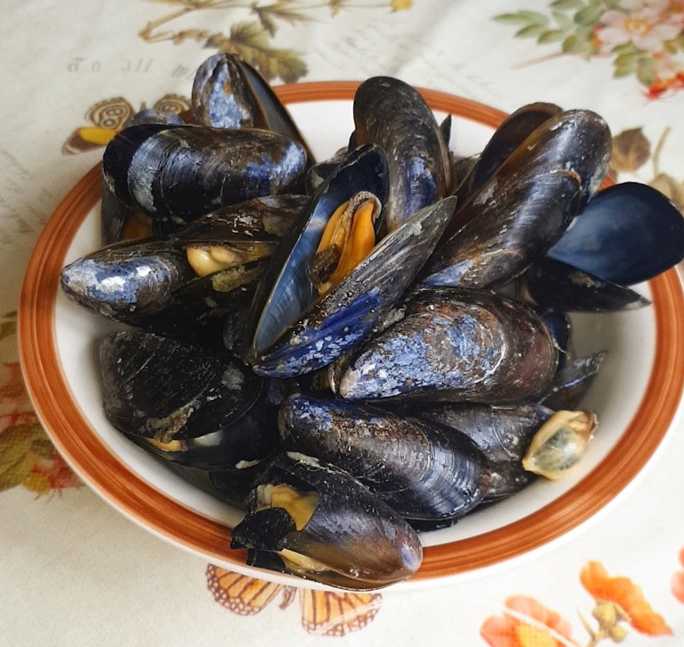 Local produce from Mulroy Bay Mussels. The County Donegal firm were awarded €75,900 in the Sustainable Aquaculture Scheme to invest in new handling equipment