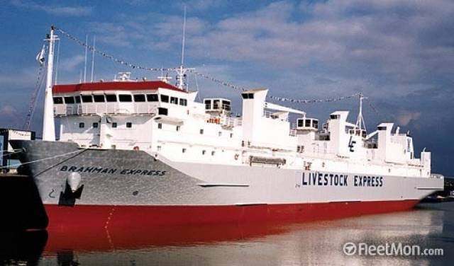 Operating a new Ireland-Turkey export livestock service, the cattleship Brahman Express (loaded with 3,000 weanlings) was monitored by Afloat heading through the Irish Sea this week