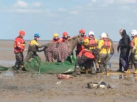 Hoylake RNLI volunteers and other emergency services worked together to free the trapped horse on the Wirral coast