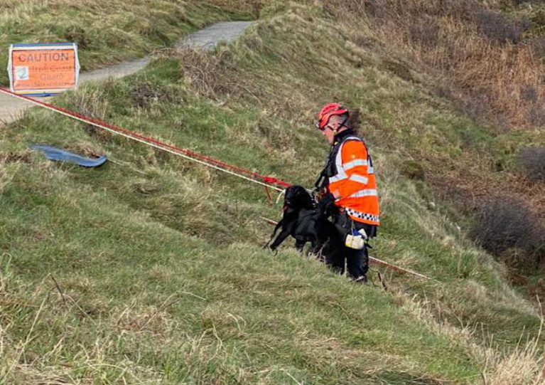 Jacko the dog is helped back up to the top of the cliff, and (below) the Howth Coast Guard cliff rescue team setting up for the descent
