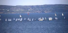 A fleet of 20 Lasers are among the DBSC dinghies now sailing on Tuesday nights on Dublin Bay