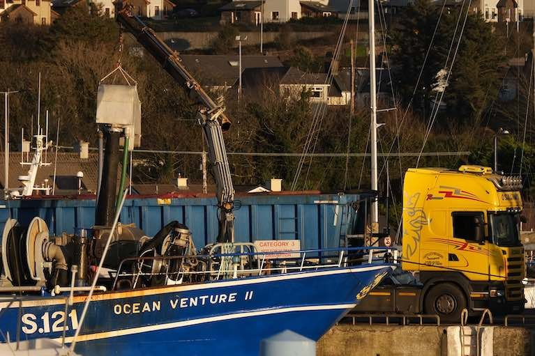 Irish vessel Ocean Venture II landing into Dingle harbour, Co Kerry, where large quantities of warm water anchovies have appeared in the past week
