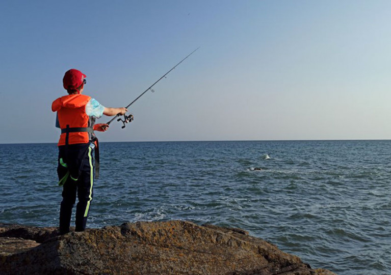 Sea Angling Survey to Document Changes in Catch Over the Years