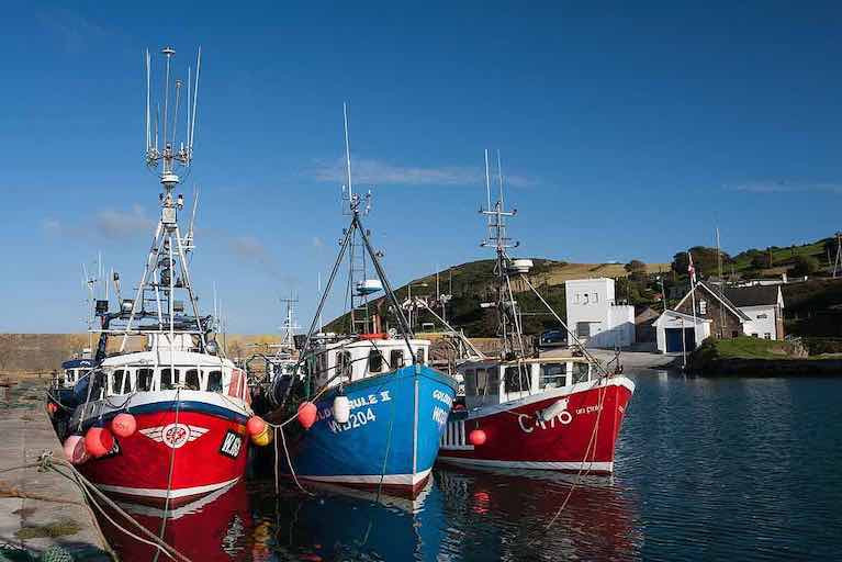 Inshore fishing trawlers at Helvick Head