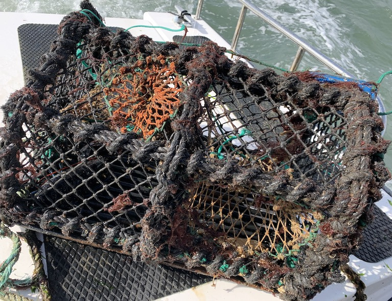 "EU-US ""Mini Deal"" on Lobster Imports  Negotiated by Former Commissioner Phil Hogan May ""Wipe Out"" Irish Lobster Fishery"