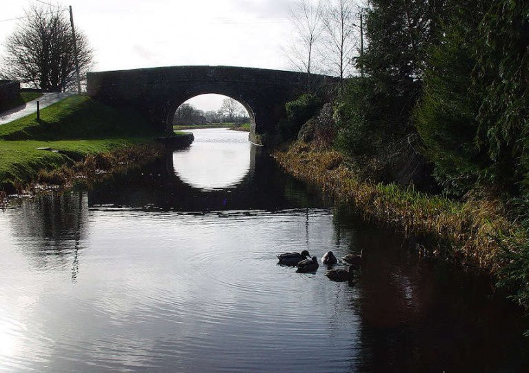 File image of the Royal Canal in Longford