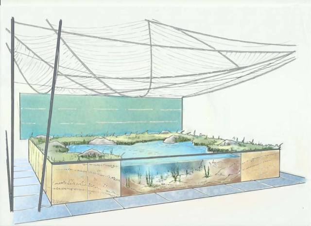 A sketch of the forthcoming Bord Iascaigh Mhara underwater garden at Bloom
