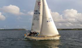 Tom MacSweeney's Scribbler white sail racing in Cork Harbour