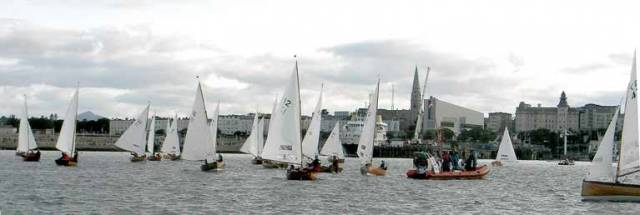 Water Wags prepare for in harbour racing at Dun Laoghaire