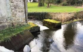 The weir where the capsize occurred on the river Suir in Cahir, Co Tipperary