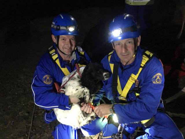 Bell the springer spaniel with her coastguard rescuers on Friday night