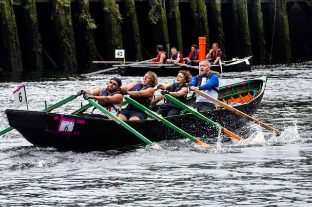 Currach racing at the Cork Harbour Festival