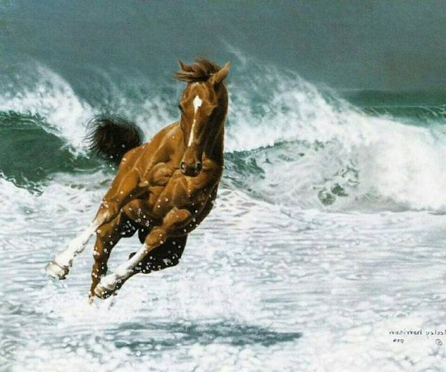 Putting a spin on it - a new twist in the ancient interaction between horses and the sea has been revealed in rumours of negotiations affecting the Irish bloodstock and fishing industries
