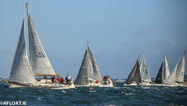 Breezy conditions for a race in last year's DBSC Turkey Shoot Series on Dublin Bay