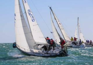 The 2019 BJ Marine sponsored Taste Of Greystones Regatta will ne held on August 25th
