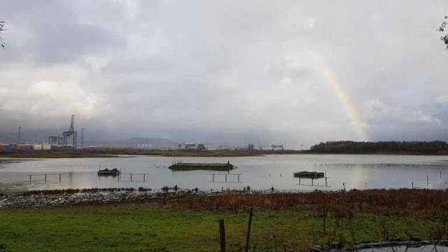 A rainbow on Belfast Lough as viewed from the Harbour's Window on Wildlife