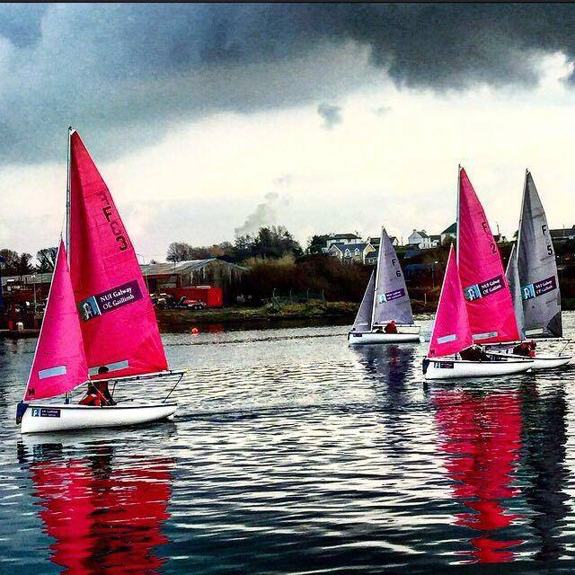 Firefly racing for Irish varsity honours at Kilrush in County Clare