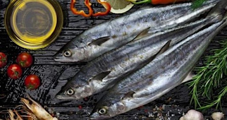 Mackerel is a valuable export fish species - Minister for Marine Charlie McConalogue welcomed the allocation of €151m in the budget for the seafood industry