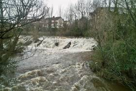 The River Dodder In Flood
