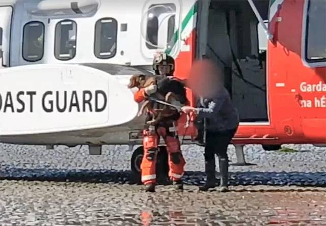 The woman and her dog brought to safety by the crew of Rescue 116