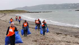 Volunteers removed half a ton of marine litter from Ireland's Eye
