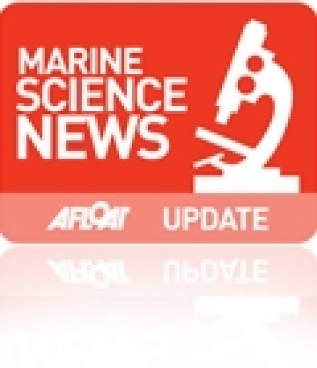Science Students Study Cold Water Coral Ecosystems In Irish Waters