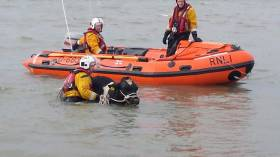 Fethard RNLI brings one of the two stranded bulls to safety