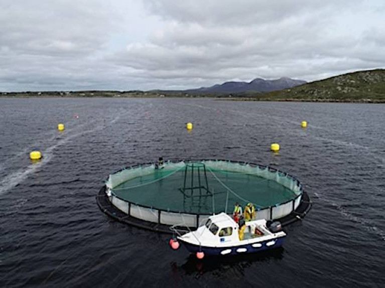 Marine Institute Joins Atlantic Collaboration for Sustainable Aquaculture