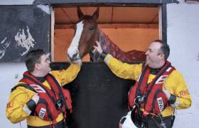 RNLI volunteers Jonathan Connor and Michael P Sullivan check up on Paddy after his dramatic rescue on 17 February