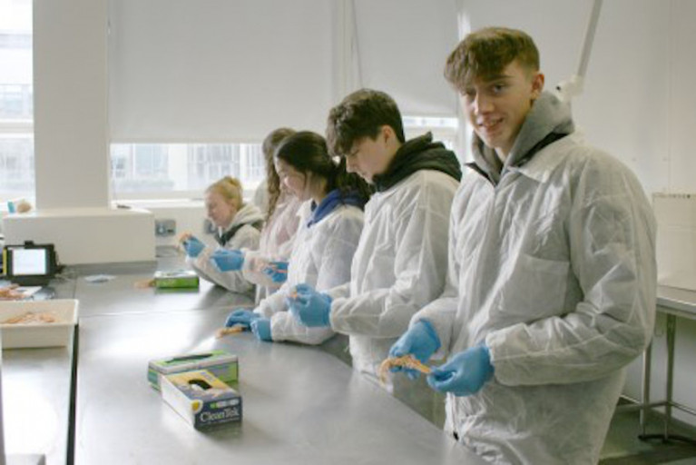 TY students getting hands-on with marine science at the Marine Institute recently