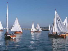 Windless Water Wags in Dun Laoghaire Harbour