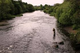 River Slaney Salmon Ban Angers Gorey Anglers