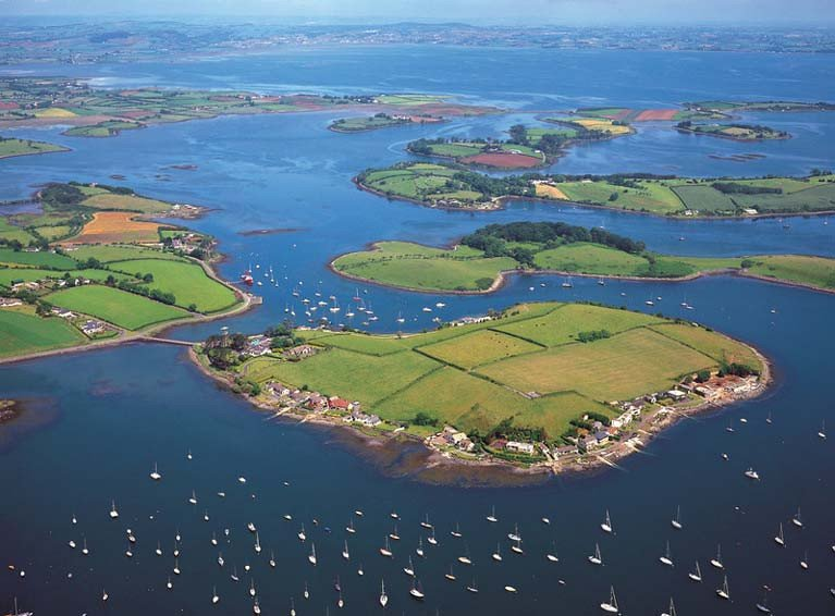 Cattle Move to Trasnagh Island on Strangford Lough
