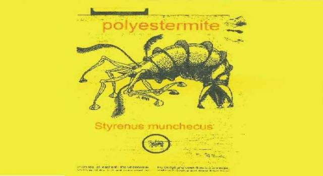The polyestermite – nasty little thing, consuming fibreglass boats somewhere near you. The rumour is that they breed them in Glandore